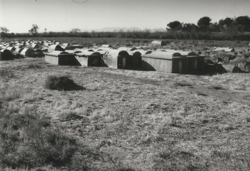 "Fig.11 Preserved barrel vaulted tombs of more recent date (in the foreground), older tombs (in the background) and the ""Torah Ground"" behind - Courtesy Werner Herberg 1973"